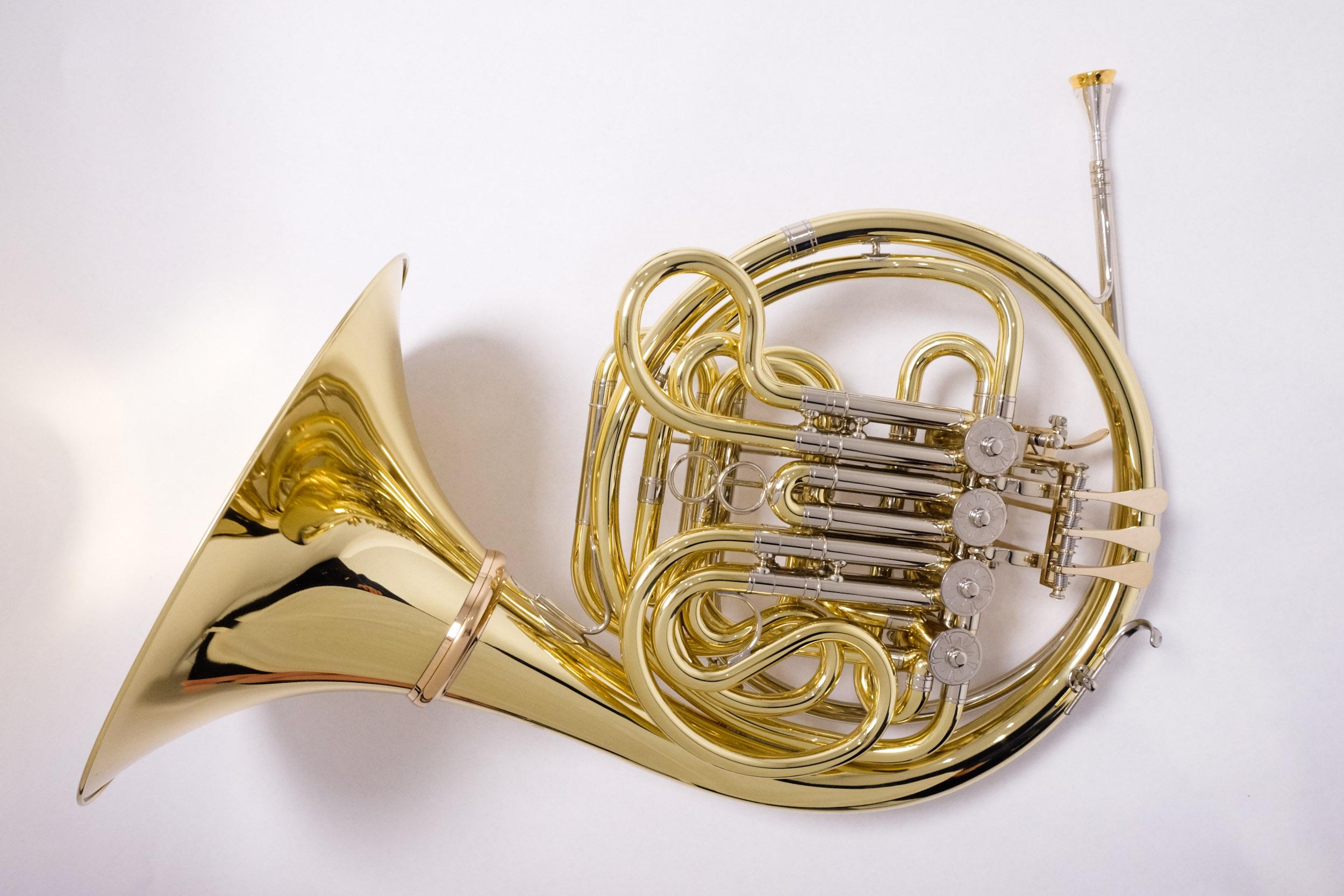 ModelEuropa,66,doppelhorn